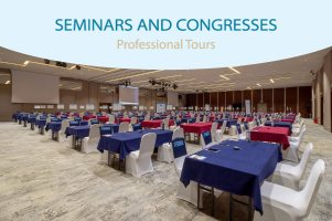 Seminars and congresses