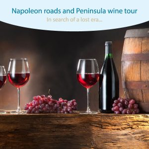 Napoleon roads and Pelješac wine tour